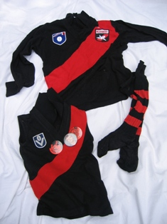 Essendon football jumpers - small